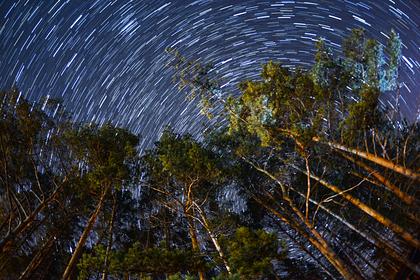 Астрофизик предупредил остолкновении састероидом накануне выборов вСША