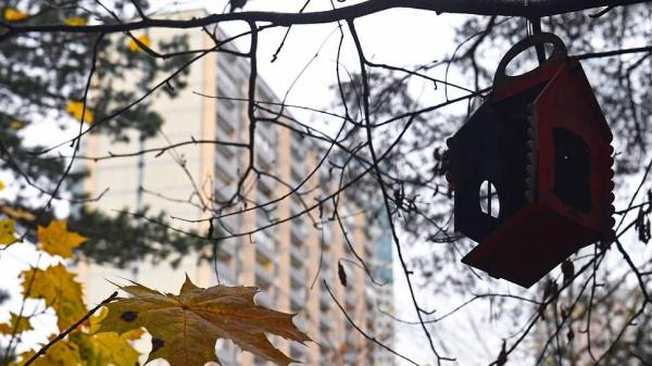 Рост стоимости вторичного жилья может остановиться